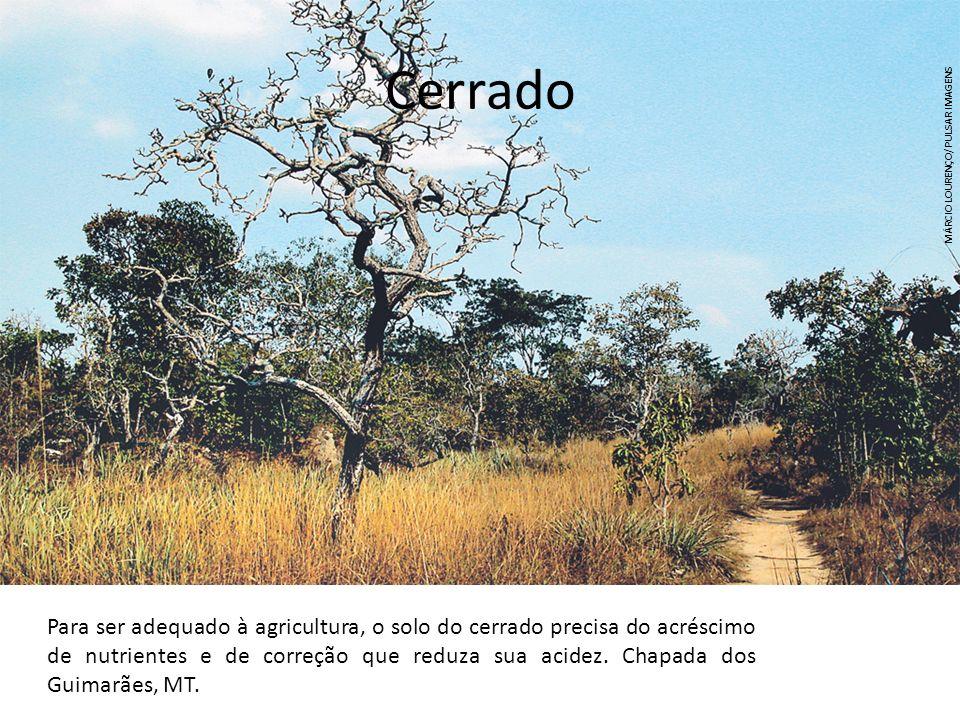 Cerrado Para ser adequado à agricultura, o solo do cerrado precisa do acréscimo de nutrientes e de correção que reduza sua acidez. Chapada dos Guimarã