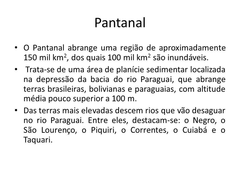 Pantanal O Pantanal abrange uma região de aproximadamente 150 mil km 2, dos quais 100 mil km 2 são inundáveis. Trata-se de uma área de planície sedime