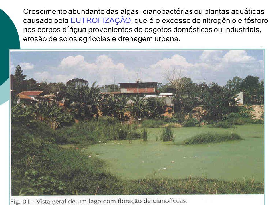 Crescimento abundante das algas, cianobactérias ou plantas aquáticas causado pela EUTROFIZAÇÃO, que é o excesso de nitrogênio e fósforo nos corpos d´água provenientes de esgotos domésticos ou industriais, erosão de solos agrícolas e drenagem urbana.