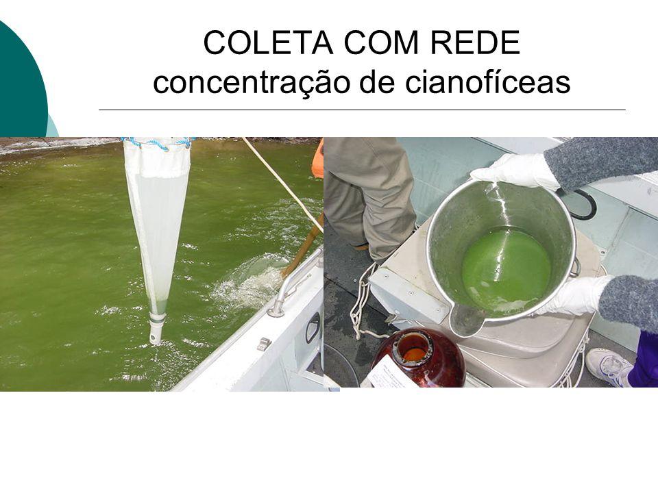 Crescimento abundante das algas, cianobactérias ou plantas aquáticas causado pela EUTROFIZAÇÃO, que é o excesso de nitrogênio e fósforo nos corpos d´á