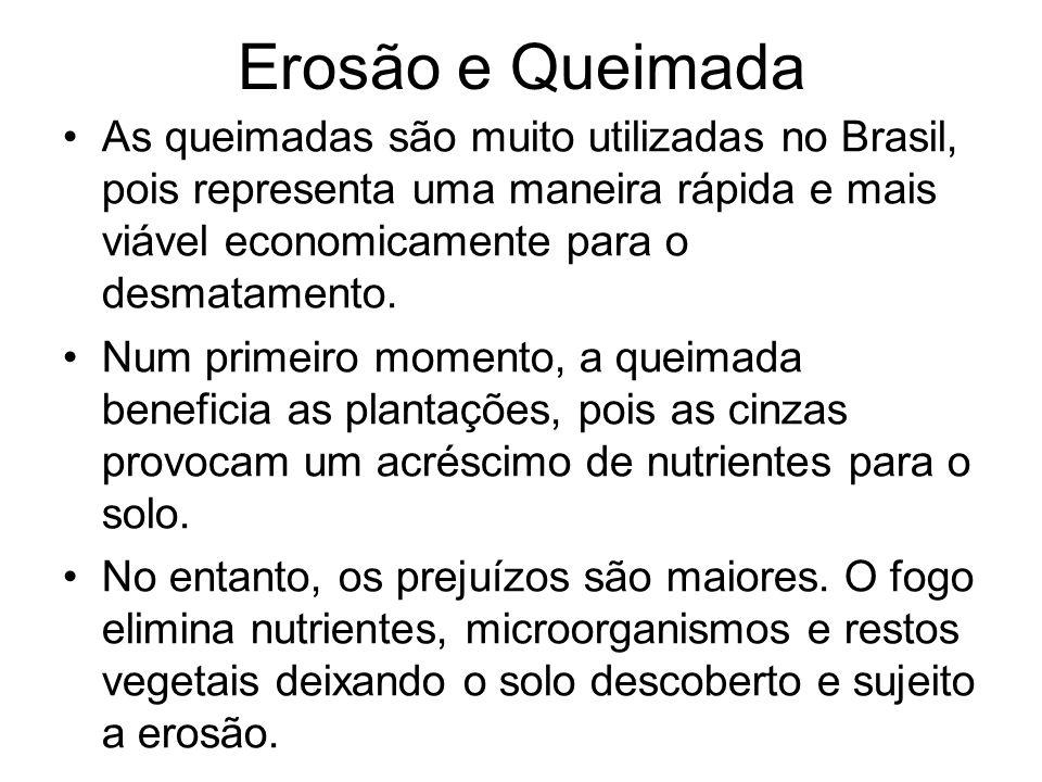 Erosão e Queimada As queimadas são muito utilizadas no Brasil, pois representa uma maneira rápida e mais viável economicamente para o desmatamento. Nu