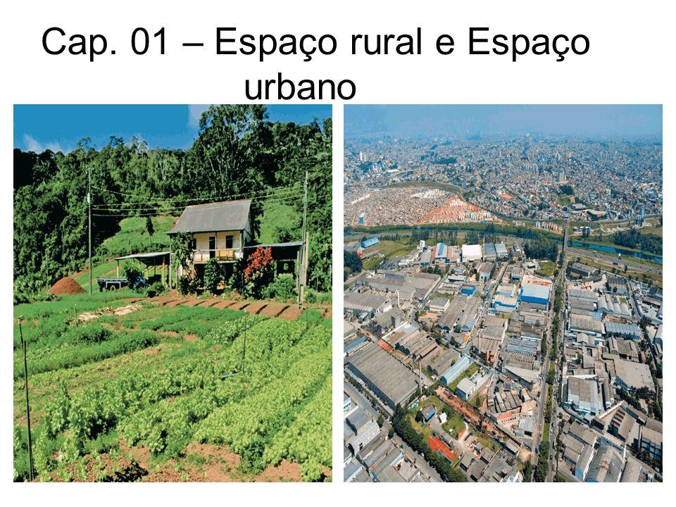 Paisagem rural Espaços utilizados pelos seres humanos para desenvolver atividades do setor primário (produção de alimentos e matérias-primas) como: a agricultura, pecuária e extrativismo.