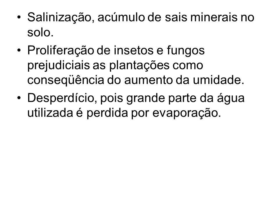 Salinização, acúmulo de sais minerais no solo. Proliferação de insetos e fungos prejudiciais as plantações como conseqüência do aumento da umidade. De