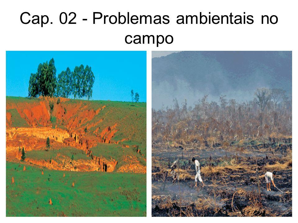 Degradação do Solo Técnicas inadequadas de uso do solo, desmatamento, irrigação sem os devidos cuidados, poluição por agrotóxicos e erosão são alguns dos problemas responsáveis pela degradação dos solos.