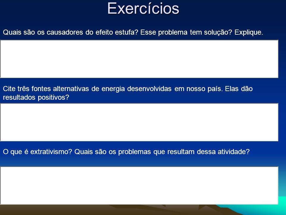 Exercícios Quais são os causadores do efeito estufa? Esse problema tem solução? Explique. Cite três fontes alternativas de energia desenvolvidas em no