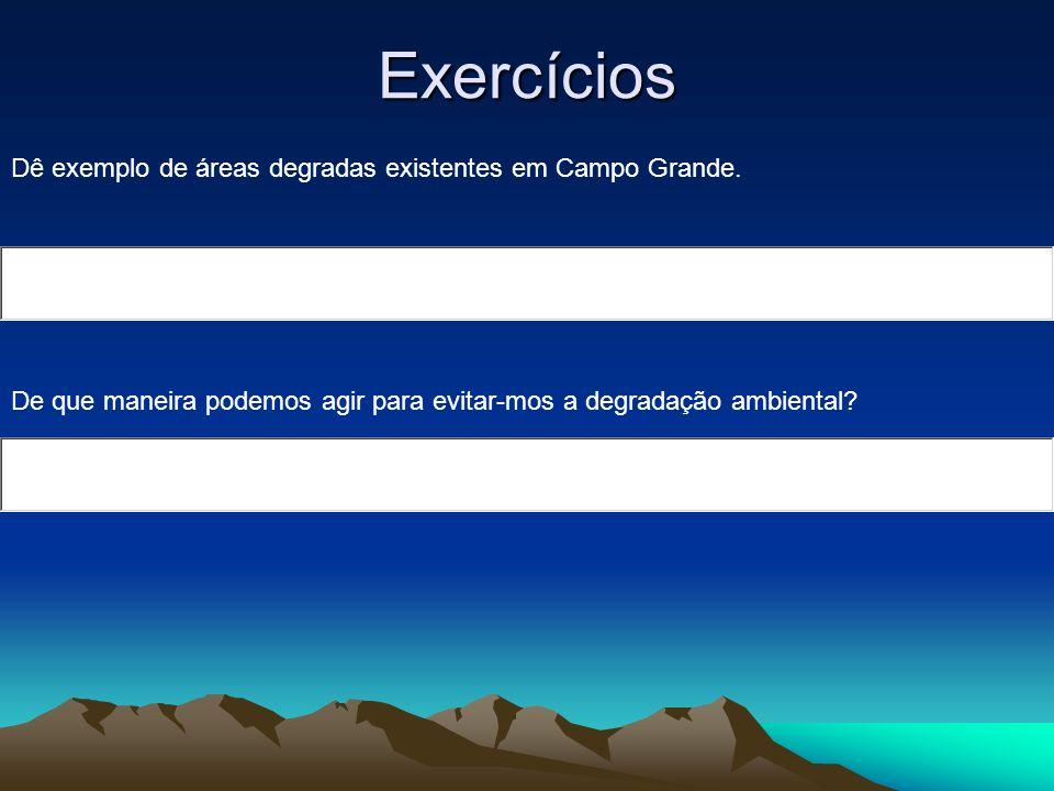 Exercícios Dê exemplo de áreas degradas existentes em Campo Grande. De que maneira podemos agir para evitar-mos a degradação ambiental?