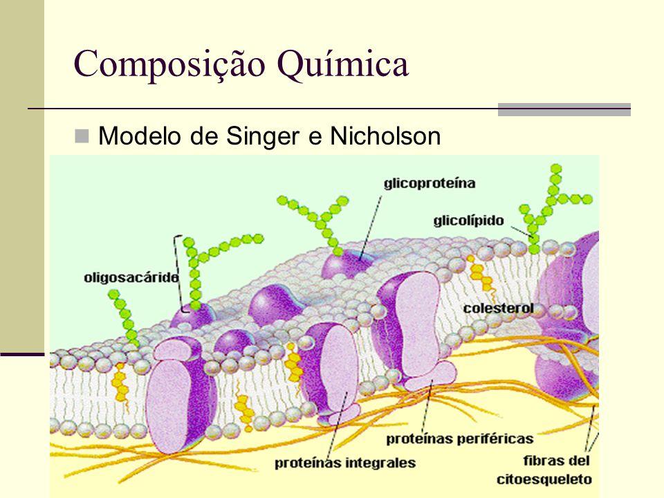 A capacidade de uma membrana de ser atravessada por algumas substâncias e não por outras define sua permeabilidade.
