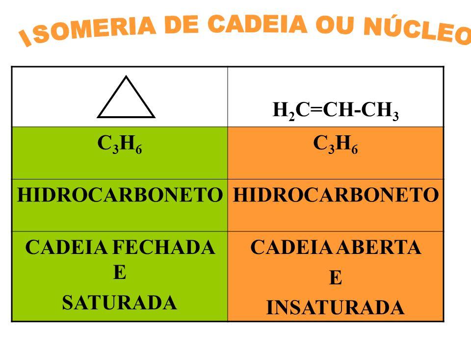 H 2 C=CH-CH 3 C3H6C3H6 C3H6C3H6 HIDROCARBONETO CADEIA FECHADA E SATURADA CADEIA ABERTA E INSATURADA