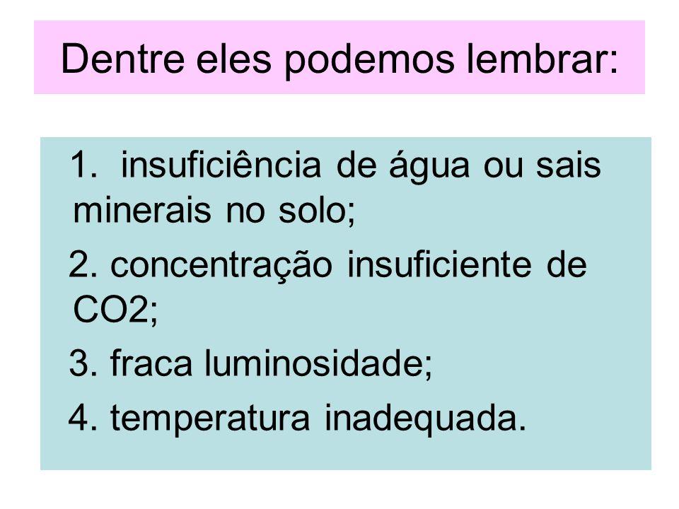 Dentre eles podemos lembrar: 1. insuficiência de água ou sais minerais no solo; 2. concentração insuficiente de CO2; 3. fraca luminosidade; 4. tempera