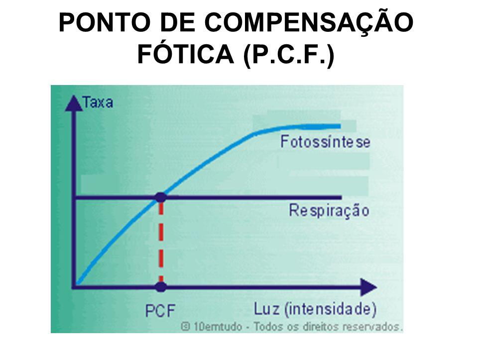 PONTO DE COMPENSAÇÃO FÓTICA (P.C.F.)