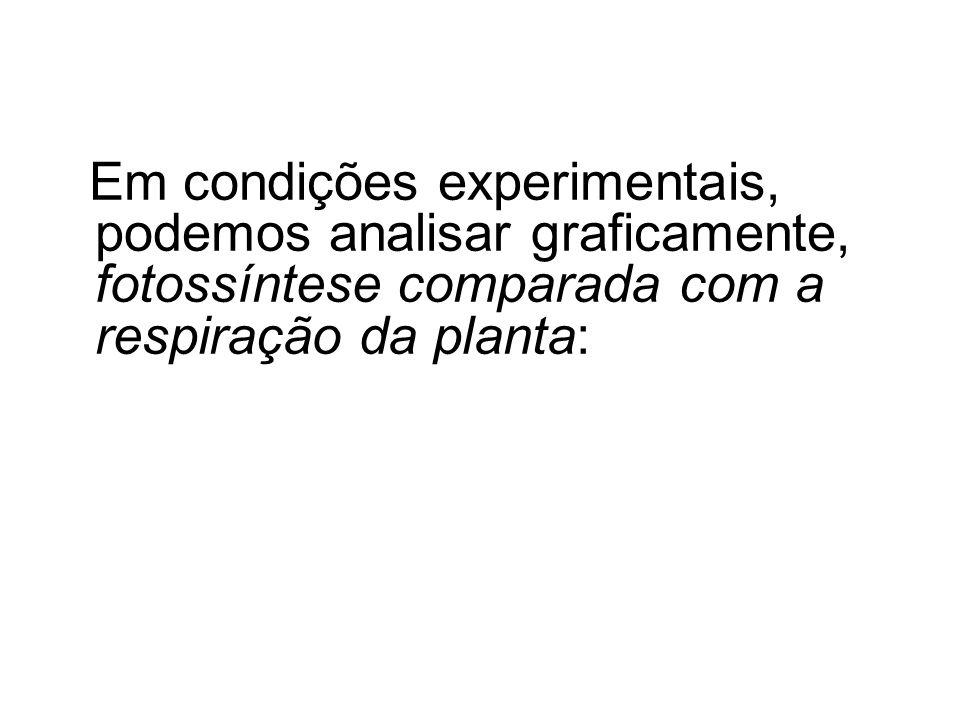 Em condições experimentais, podemos analisar graficamente, fotossíntese comparada com a respiração da planta: