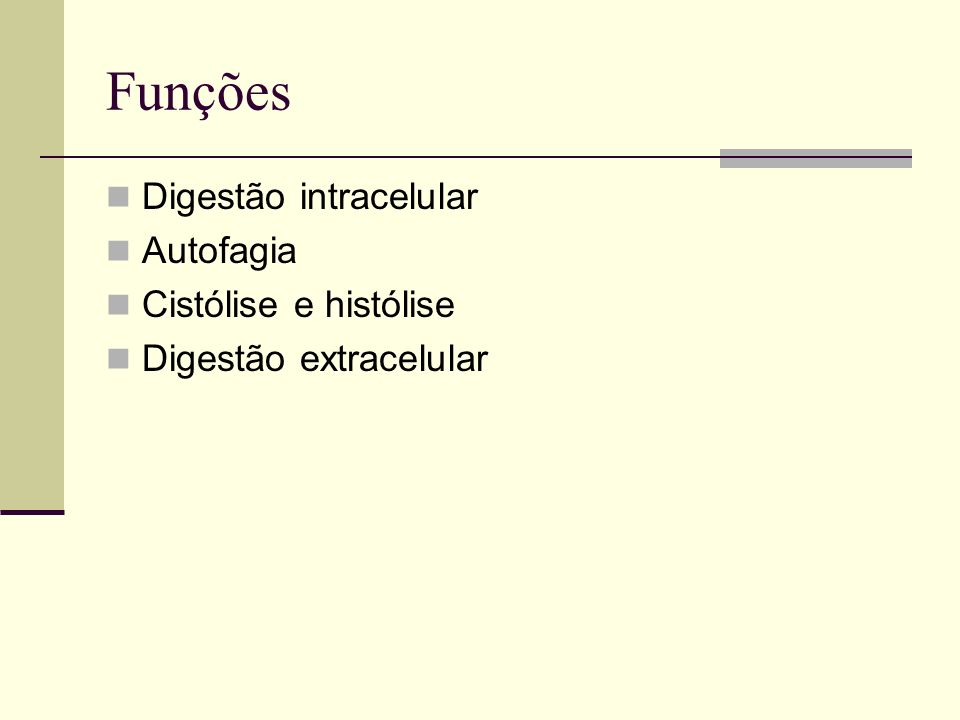 Funções Digestão intracelular Autofagia Cistólise e histólise Digestão extracelular