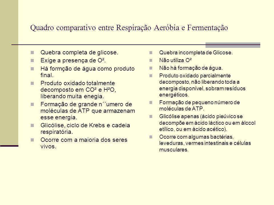 Quadro comparativo entre Respiração Aeróbia e Fermentação Quebra completa de glicose. Exige a presença de O². Há formção de água como produto final. P