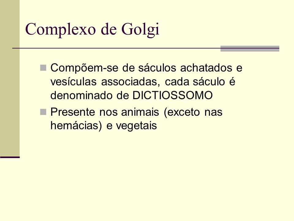 Complexo de Golgi Compõem-se de sáculos achatados e vesículas associadas, cada sáculo é denominado de DICTIOSSOMO Presente nos animais (exceto nas hem