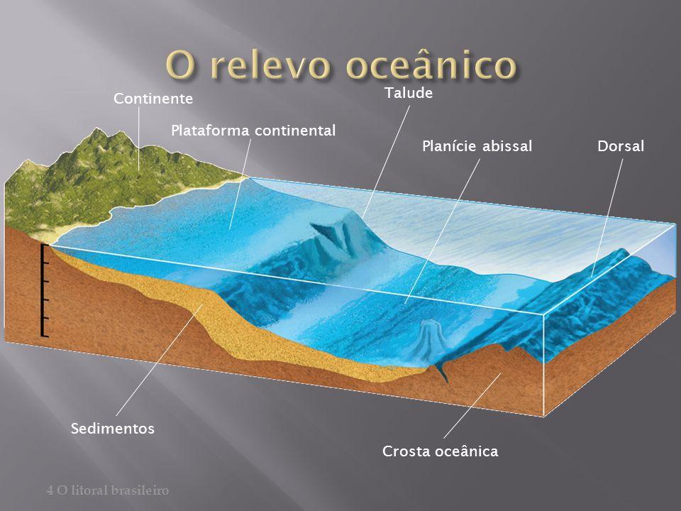 Continente Plataforma continental Talude Planície abissalDorsal Crosta oceânica Sedimentos 4 O litoral brasileiro