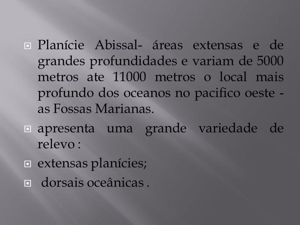 Planície Abissal- áreas extensas e de grandes profundidades e variam de 5000 metros ate 11000 metros o local mais profundo dos oceanos no pacifico oes
