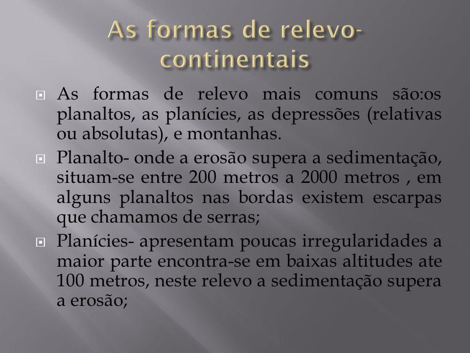 As formas de relevo mais comuns são:os planaltos, as planícies, as depressões (relativas ou absolutas), e montanhas. Planalto- onde a erosão supera a