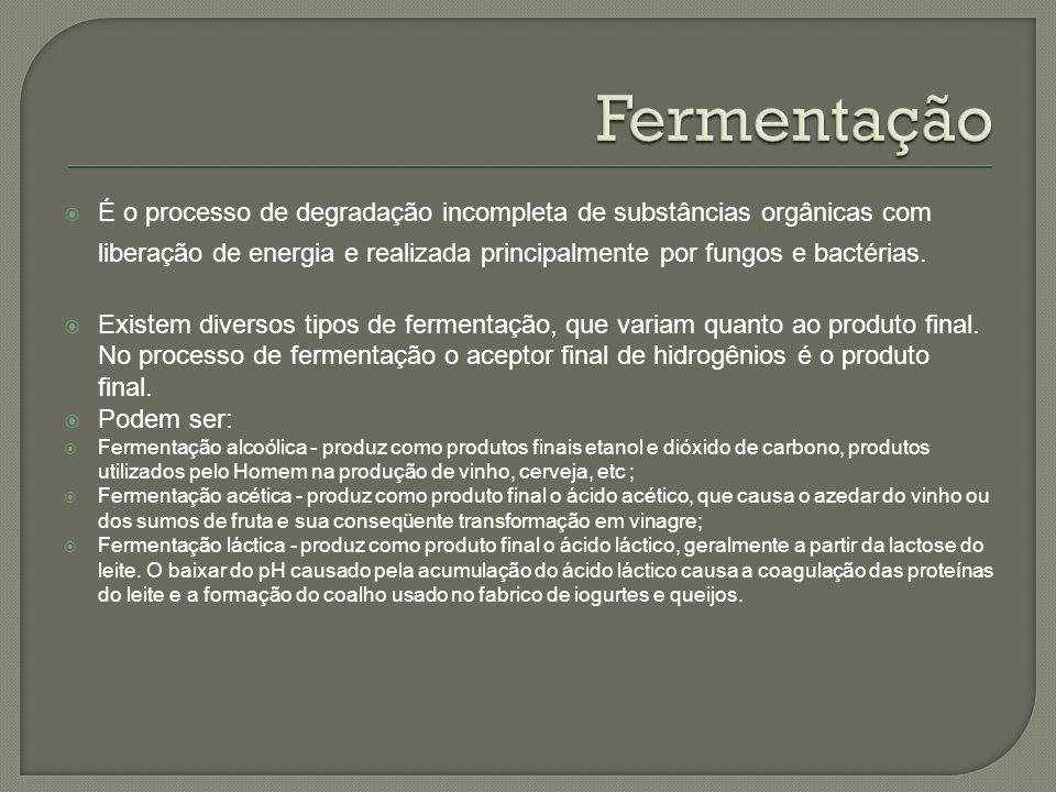 É o processo de degradação incompleta de substâncias orgânicas com liberação de energia e realizada principalmente por fungos e bactérias. Existem div