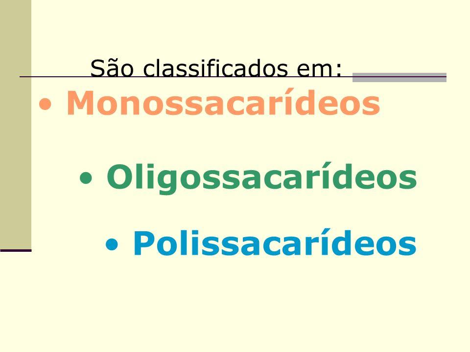 São classificados em: Monossacarídeos Oligossacarídeos Polissacarídeos