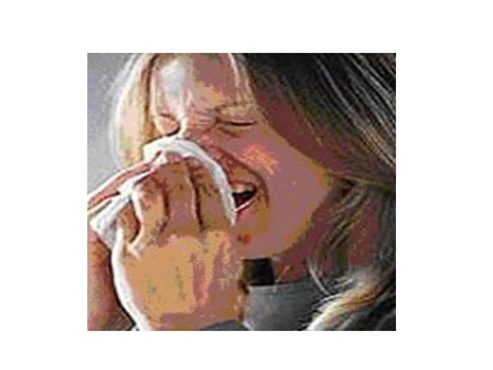 GRIPE TRANSMISSÃO Saliva SINTOMAS Coriza, tosse, dores musculares e fraqueza. PROFILAXIA Vacinação Evitar contato com doentes