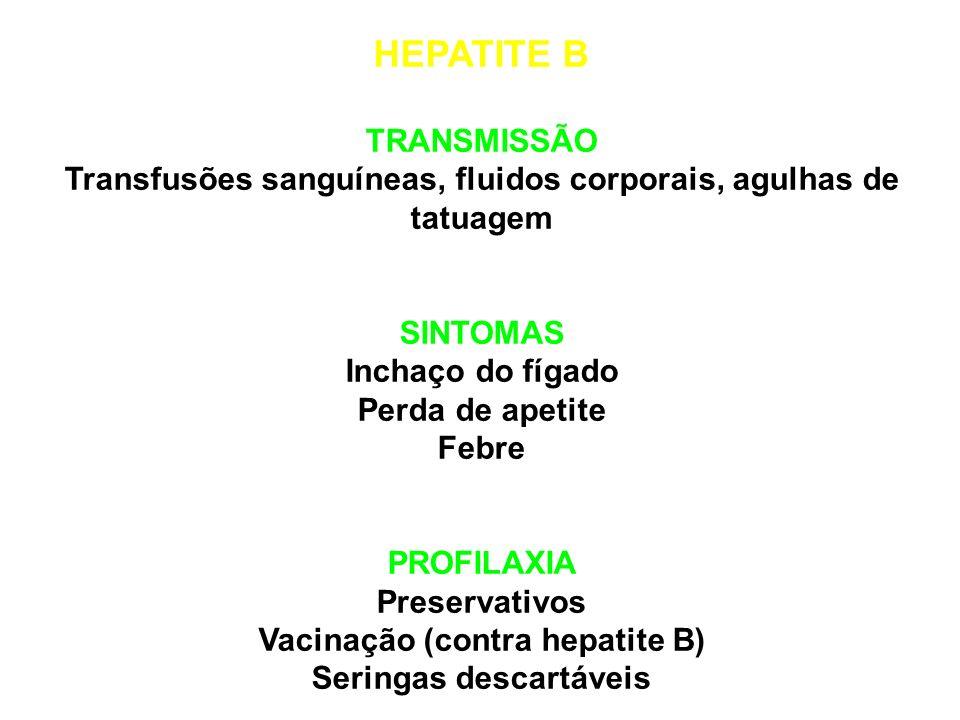 HEPATITE A e E TRANSMISSÃO Água ou alimentos contaminados (por fezes humanas) SINTOMAS Inchaço do fígado Dor de cabeça Icterícea PROFILAXIA Saneamento