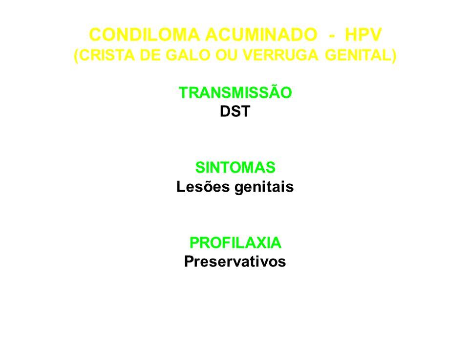 HEPATITES C TRANSMISSÃO DST, transfusões sanguíneas SINTOMAS Inchaço do fígado Febre PROFILAXIA Preservativos Seringas descartáveis