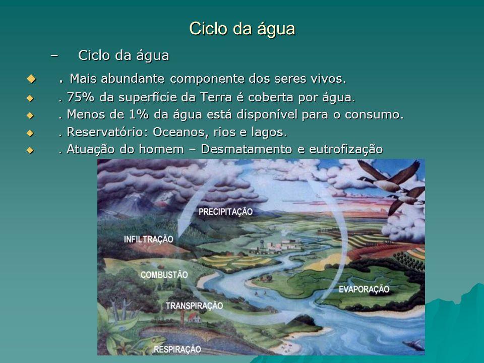 Ciclo da água –Ciclo da água. Mais abundante componente dos seres vivos.. Mais abundante componente dos seres vivos.. 75% da superfície da Terra é cob
