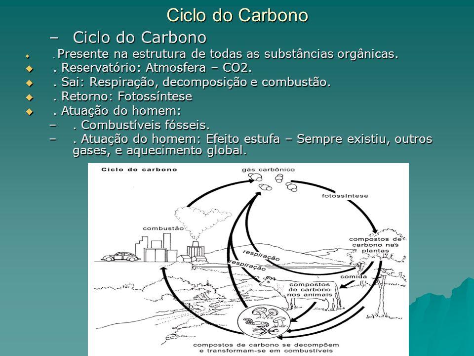 Ciclo do Carbono –Ciclo do Carbono. Presente na estrutura de todas as substâncias orgânicas.. Presente na estrutura de todas as substâncias orgânicas.