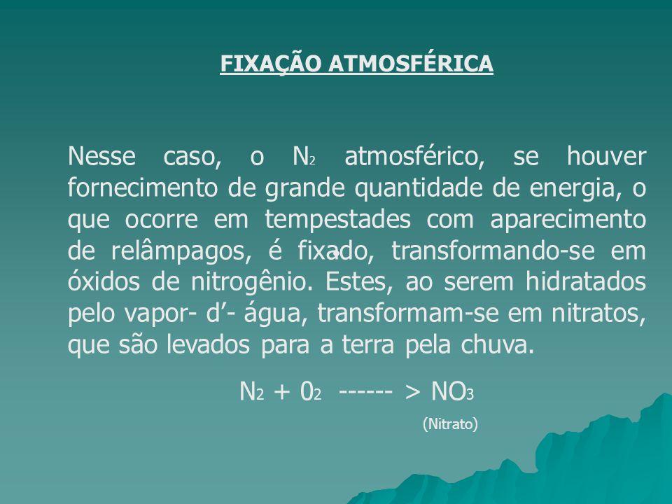 FIXAÇÃO ATMOSFÉRICA Nesse caso, o N 2 atmosférico, se houver fornecimento de grande quantidade de energia, o que ocorre em tempestades com apareciment