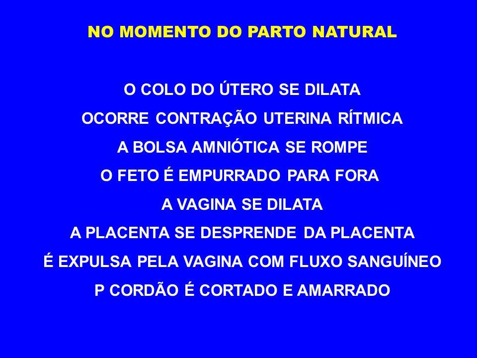 PARTO NATURAL NORMALMENTE OCORRE NO 9º MÊS (266 DIAS APROXIMADAMENTE)