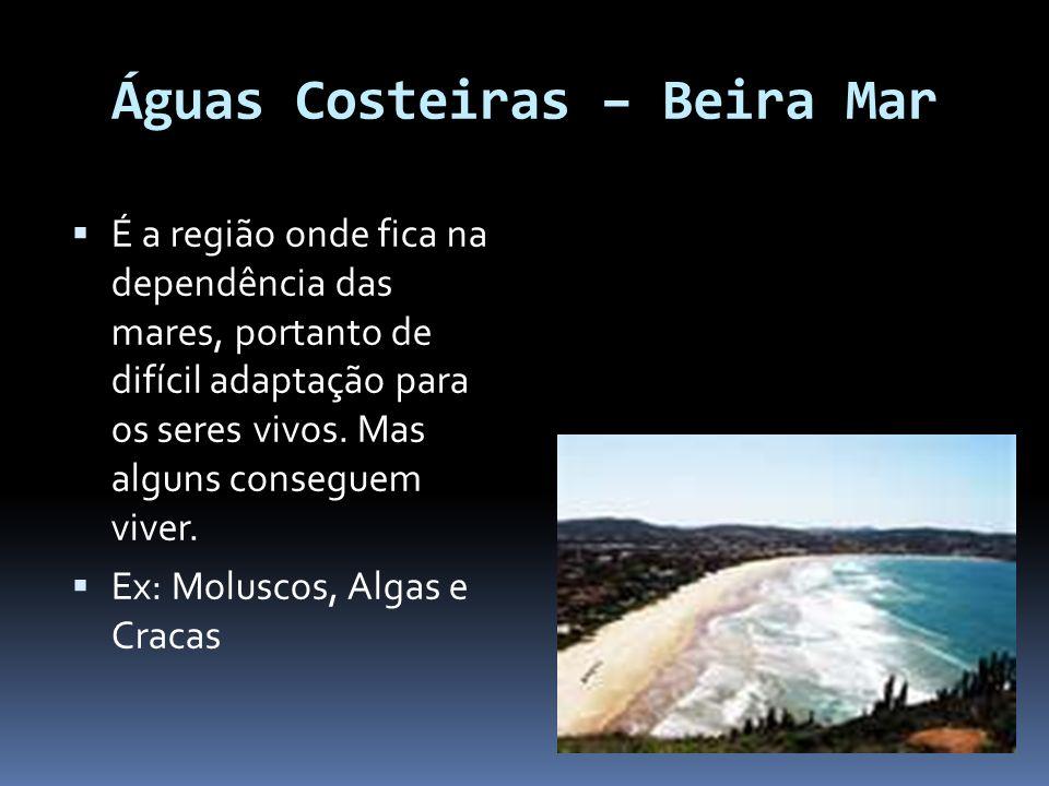 Águas Costeiras – Beira Mar É a região onde fica na dependência das mares, portanto de difícil adaptação para os seres vivos. Mas alguns conseguem viv