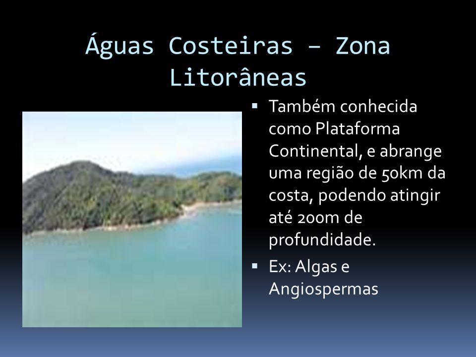 Águas Costeiras – Zona Litorâneas Também conhecida como Plataforma Continental, e abrange uma região de 50km da costa, podendo atingir até 200m de pro
