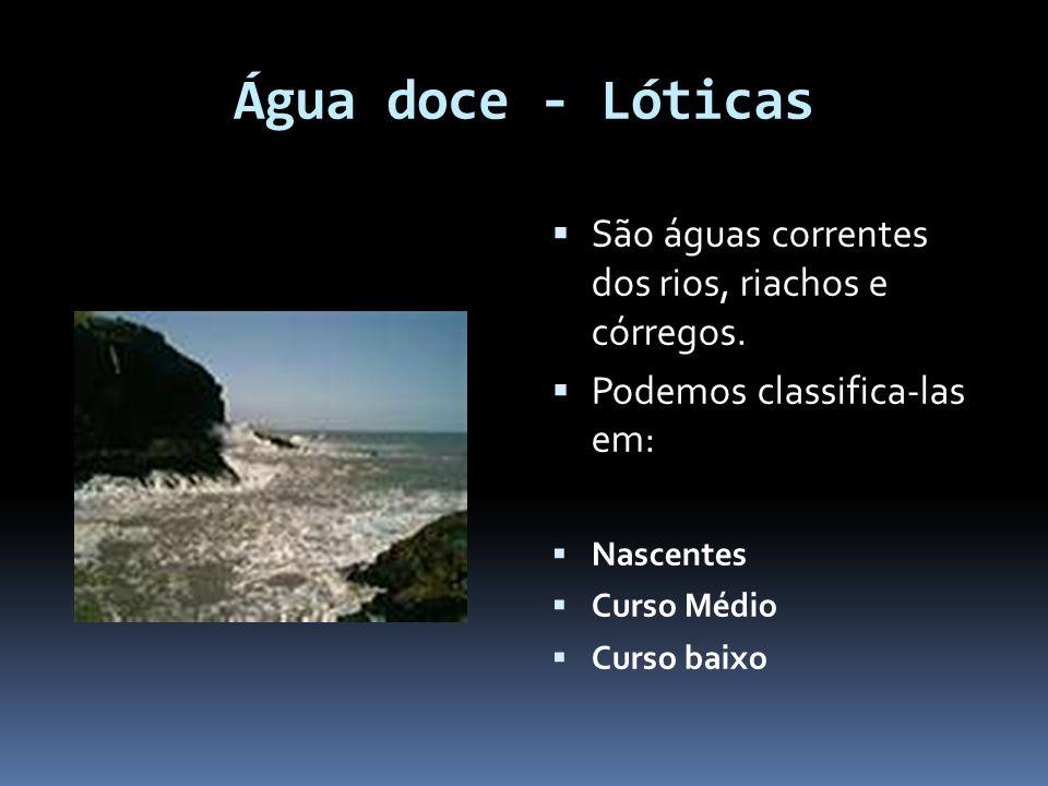 Água doce - Lóticas São águas correntes dos rios, riachos e córregos. Podemos classifica-las em: Nascentes Curso Médio Curso baixo