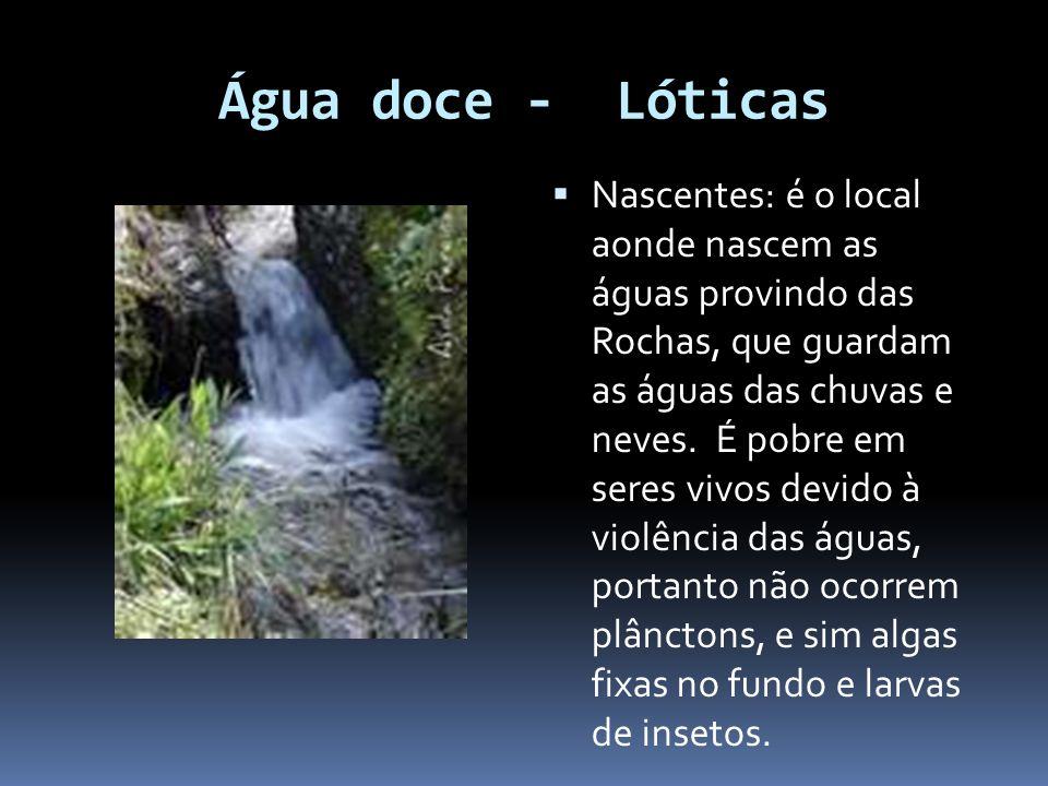 Água doce - Lóticas Nascentes: é o local aonde nascem as águas provindo das Rochas, que guardam as águas das chuvas e neves. É pobre em seres vivos de