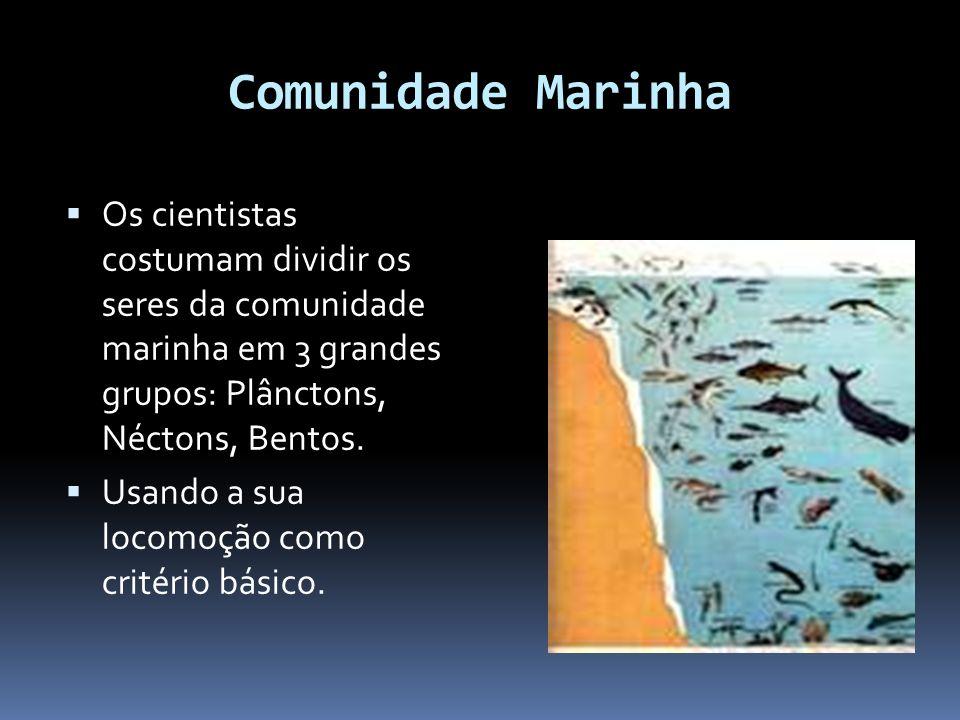 Comunidade Marinha Os cientistas costumam dividir os seres da comunidade marinha em 3 grandes grupos: Plânctons, Néctons, Bentos. Usando a sua locomoç