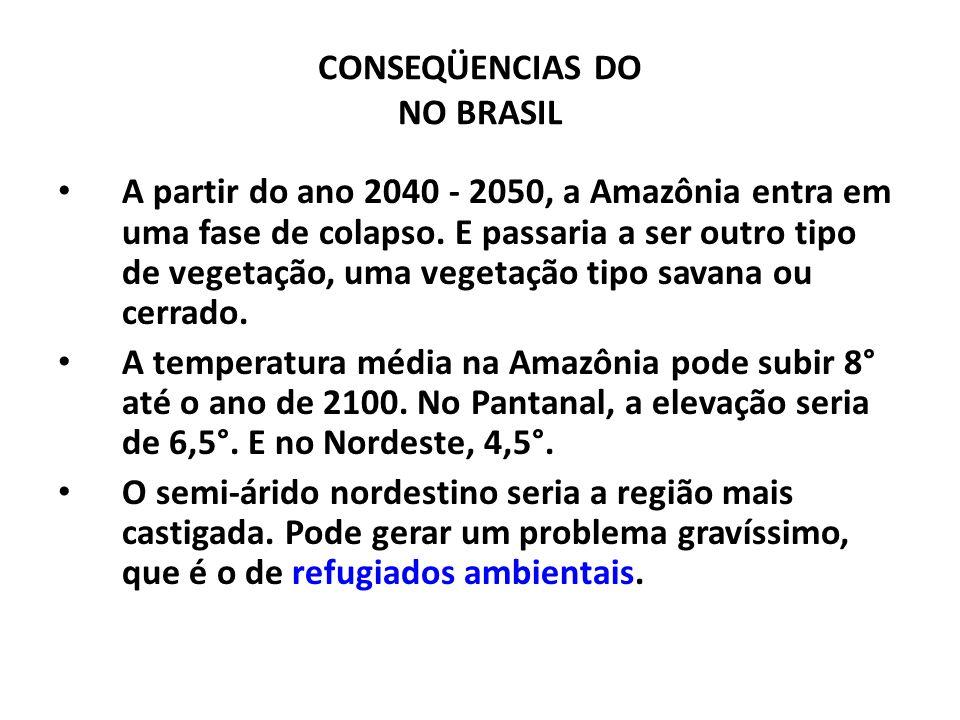 CONSEQÜENCIAS DO NO BRASIL A partir do ano 2040 - 2050, a Amazônia entra em uma fase de colapso. E passaria a ser outro tipo de vegetação, uma vegetaç