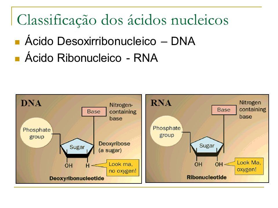 Tanto o DNA como o RNA são formados pelo encadeamento de grande número de moléculas menores, os nucleotídeos, formados por três tipos de substâncias químicas: Base nitrogenada, composto por uma cadeia fechada de carbonos que contêm nitrogênio.
