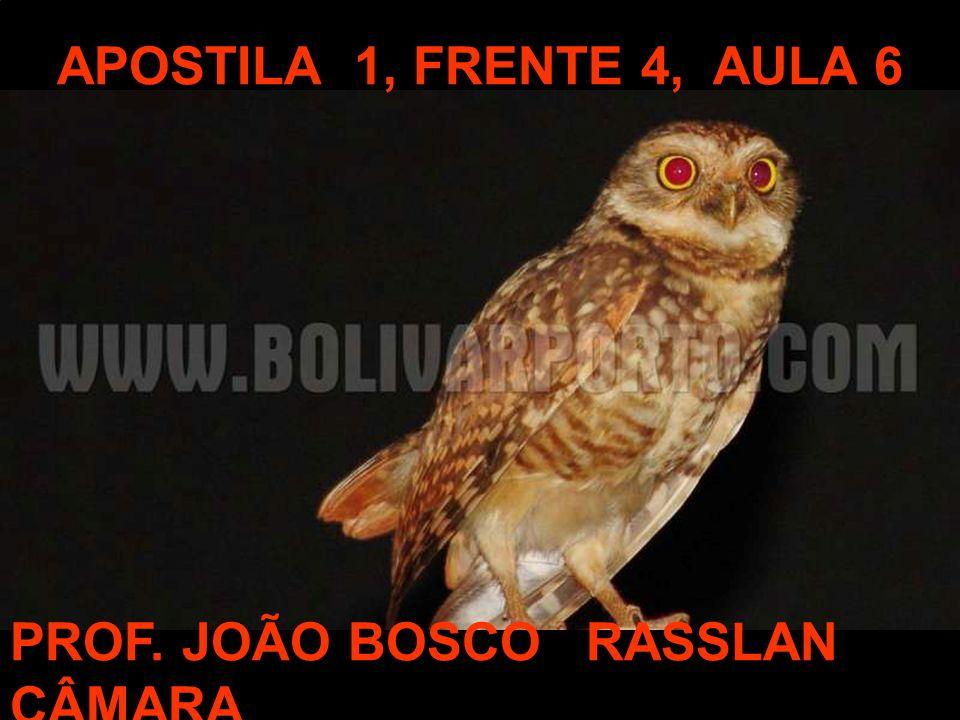 APOSTILA 1, FRENTE 4, AULA 6 PROF. JOÃO BOSCORASSLAN CÂMARA
