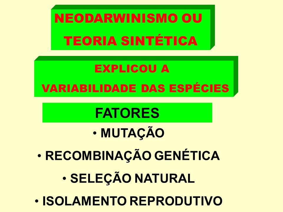NEODARWINISMO OU TEORIA SINTÉTICA FATORES MUTAÇÃO RECOMBINAÇÃO GENÉTICA SELEÇÃO NATURAL ISOLAMENTO REPRODUTIVO EXPLICOU A VARIABILIDADE DAS ESPÉCIES