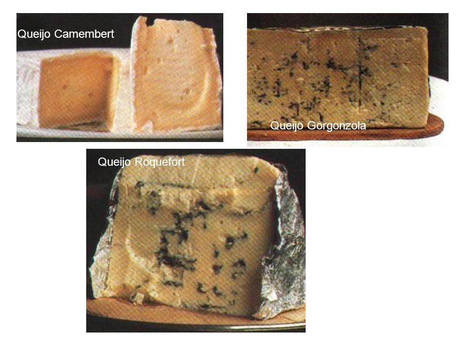 Queijo Camembert Queijo Gorgonzola Queijo Roquefort