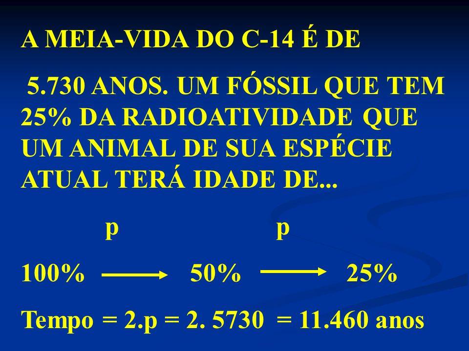 MEIA-VIDA OU PERÍODO DE SEMIDESINTEGRAÇÃO ( p) : É O TEMPO NECESSÁRIO PARA QUE METADE DA AMOSTRA SE DESINTEGRE. m 0 m 0 /2 p