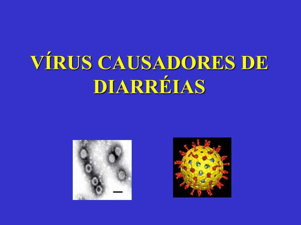 VÍRUS CAUSADORES DE DIARRÉIAS