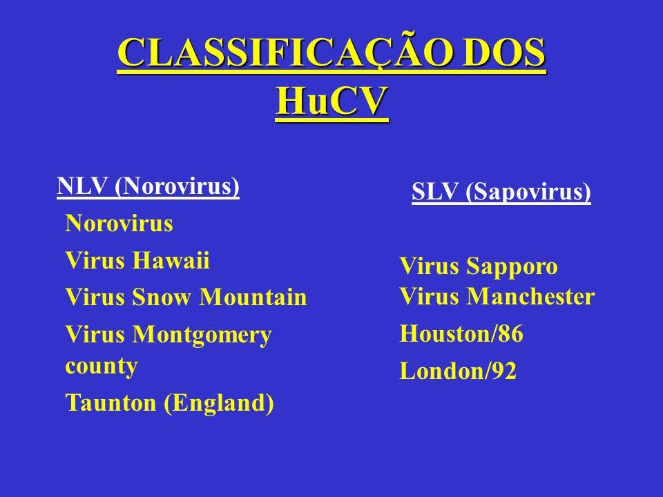 CLASSIFICAÇÃO DOS HuCV NLV (Norovirus) Norovirus Virus Hawaii Virus Snow Mountain Virus Montgomery county Taunton (England) SLV (Sapovirus) Virus Sapp