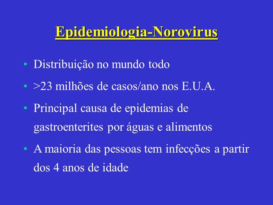 Epidemiologia-Norovirus Distribuição no mundo todo >23 milhões de casos/ano nos E.U.A. Principal causa de epidemias de gastroenterites por águas e ali