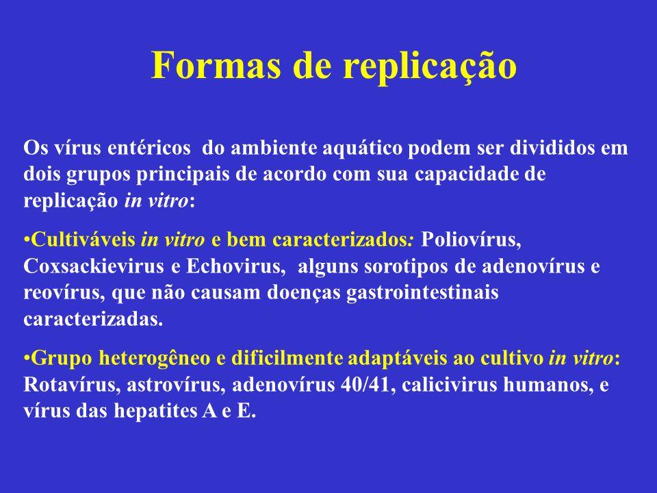 Formas de replicação Os vírus entéricos do ambiente aquático podem ser divididos em dois grupos principais de acordo com sua capacidade de replicação
