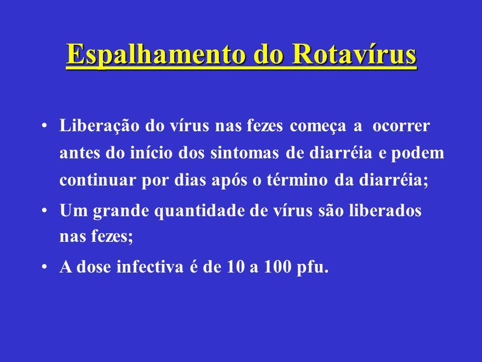 Espalhamento do Rotavírus Liberação do vírus nas fezes começa a ocorrer antes do início dos sintomas de diarréia e podem continuar por dias após o tér