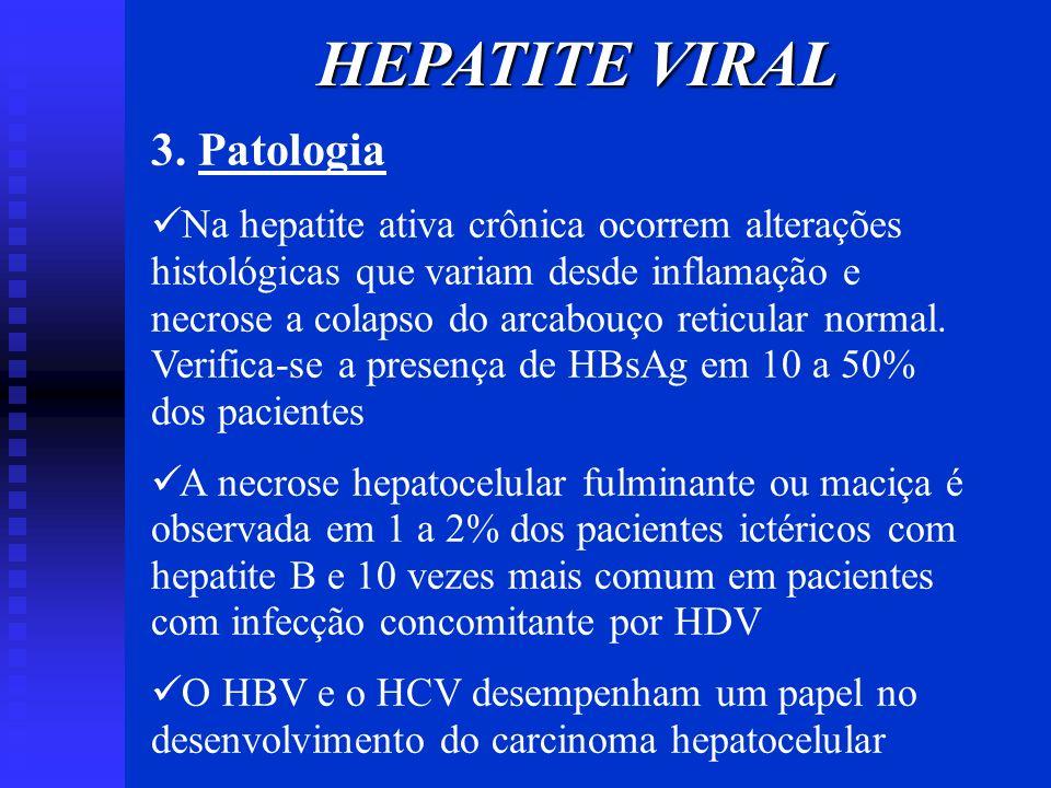 HEPATITE VIRAL 3. Patologia Na hepatite ativa crônica ocorrem alterações histológicas que variam desde inflamação e necrose a colapso do arcabouço ret
