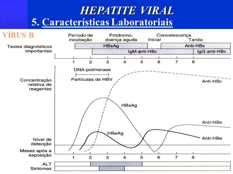5. Características Laboratoriais VÍRUS B HEPATITE VIRAL