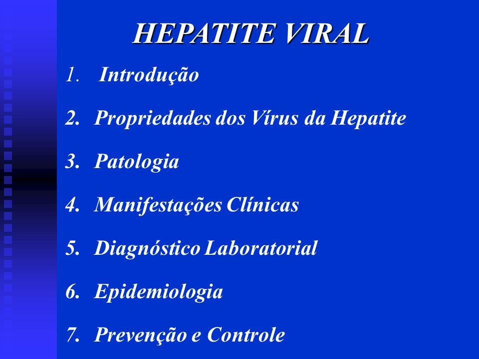 HEPATITE VIRAL 1. Introdução 2. Propriedades dos Vírus da Hepatite 3. Patologia 4. Manifestações Clínicas 5. Diagnóstico Laboratorial 6. Epidemiologia