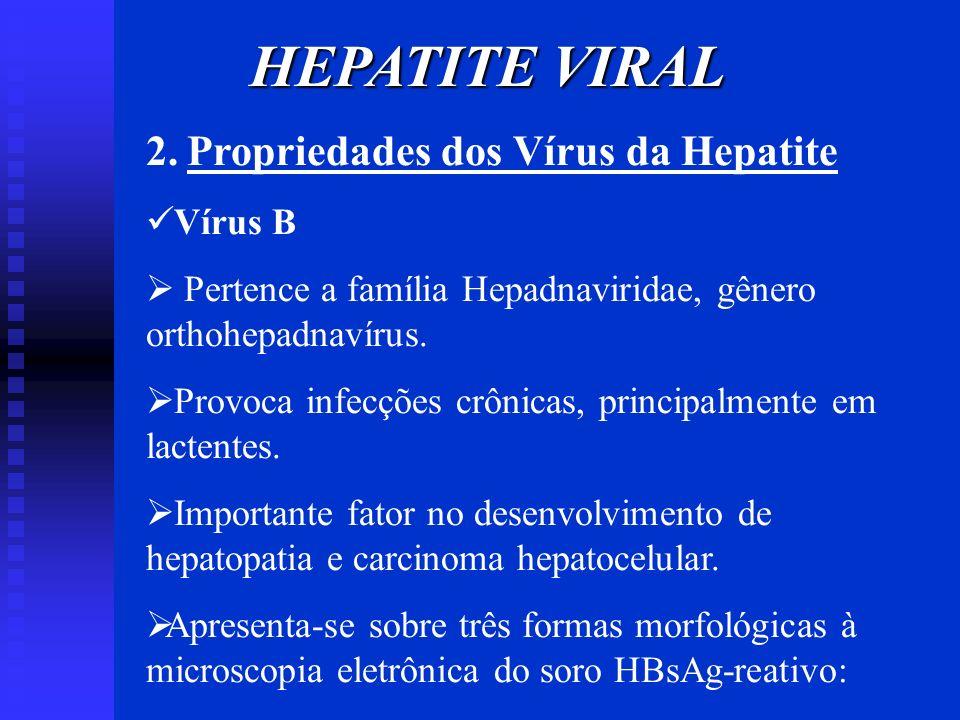 HEPATITE VIRAL 2. Propriedades dos Vírus da Hepatite Vírus B Pertence a família Hepadnaviridae, gênero orthohepadnavírus. Provoca infecções crônicas,
